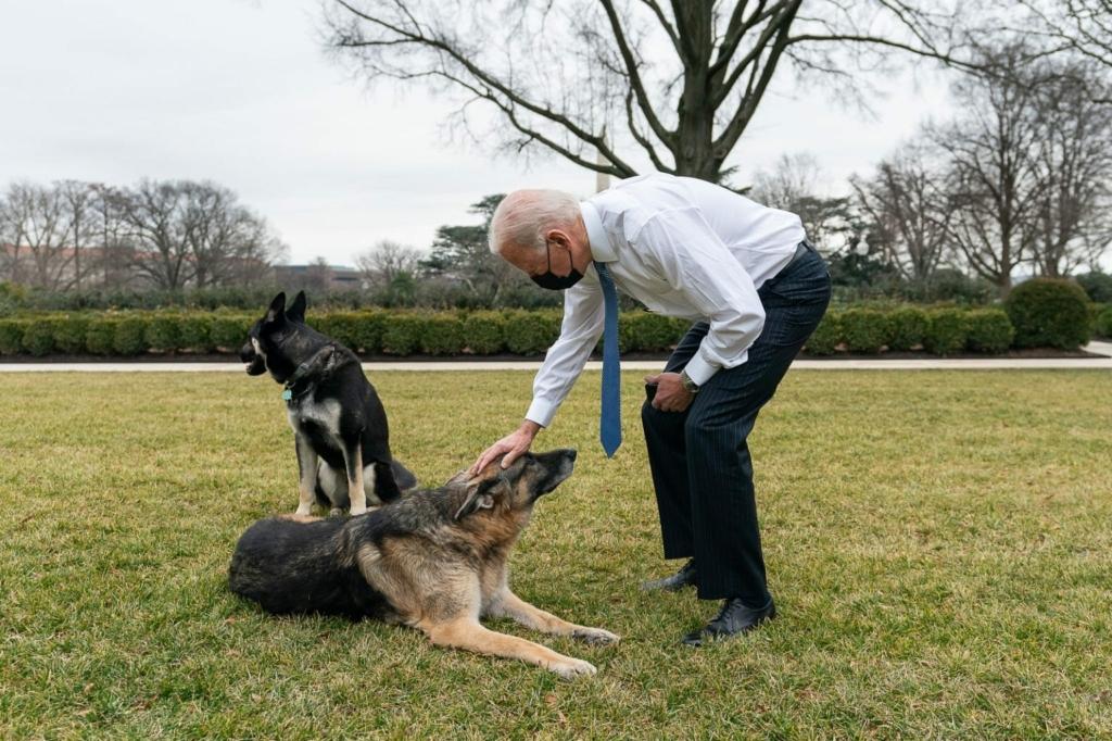 Biden anuncia plano de US$ 2,3 tri