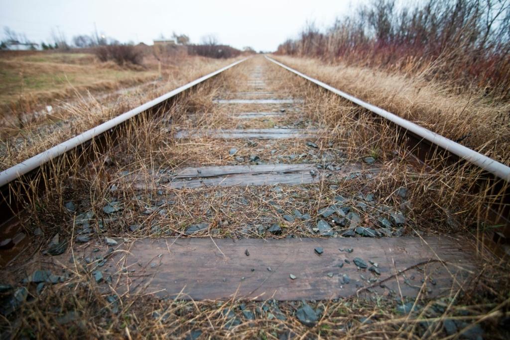 Bahia Mineração arremata ferrovia por R$ 32,7 mi em leilão sem ágio - Foto: Divulgação
